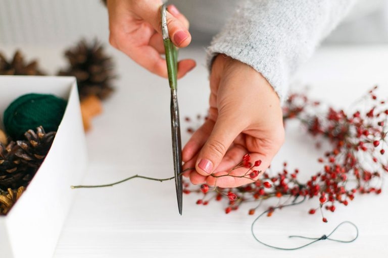 Frauenhände schneiden Beerenzweige mit einer Schere