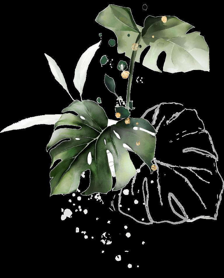 Aquarell-Pflanze