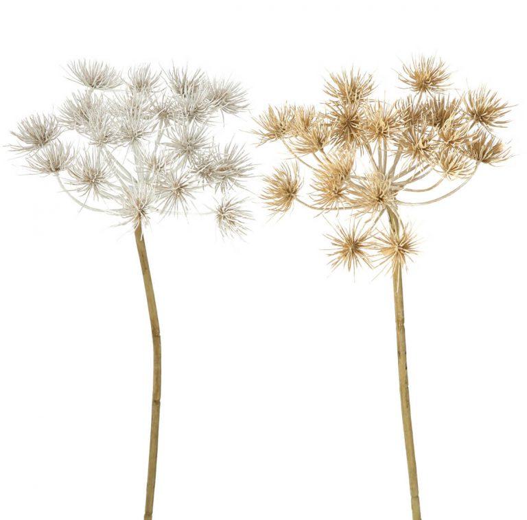 Deko-Pflanzen
