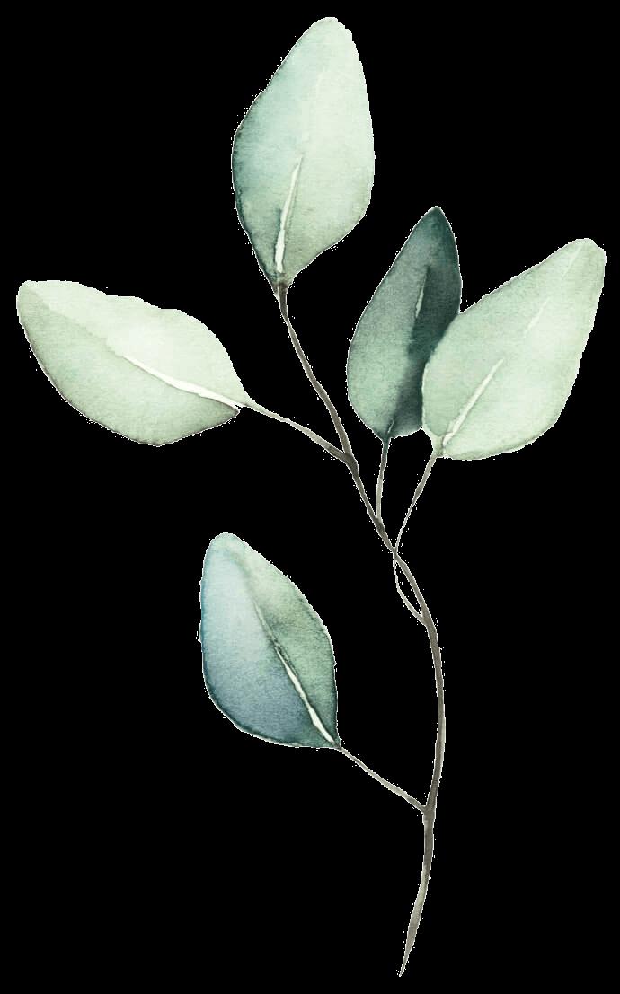 Grüner Zweig gemalt mit Aquarell