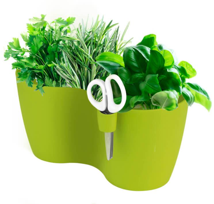 Kräutertopf in Grün mit Kräutern und Schere
