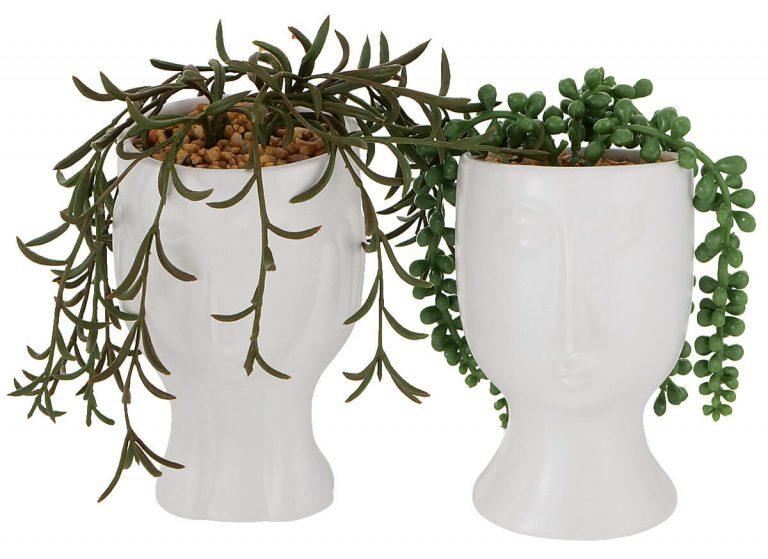 Pflanz-Übertöpfe bepflanzt