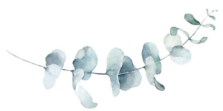 Zweig gemalt mit Aquarell