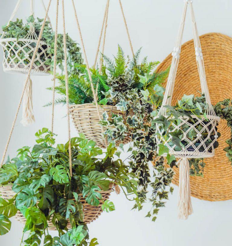 Blumenampeln aus Makramee und Naturmaterialien