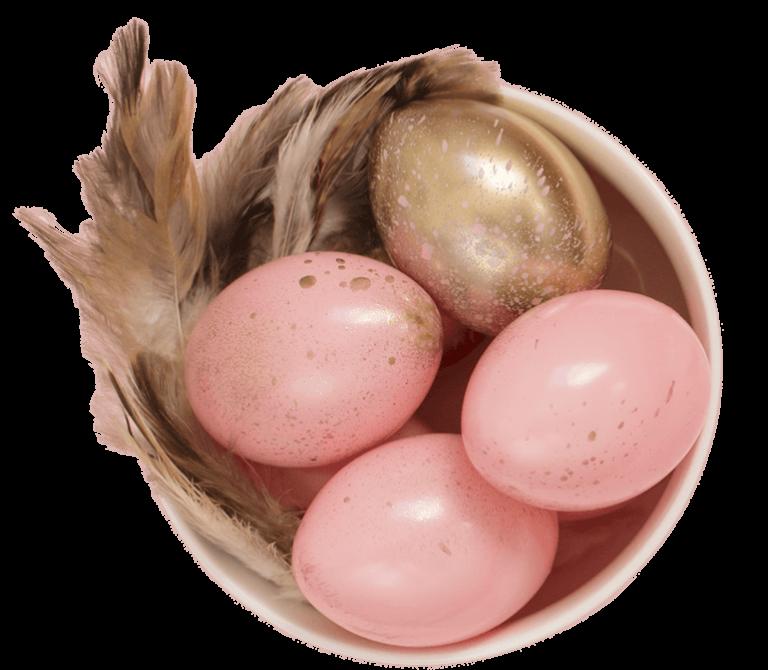 Rosa und goldene Eier sowie Feder in Schale
