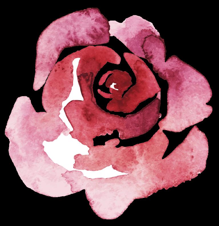 Rose gemalt mit Aquarell