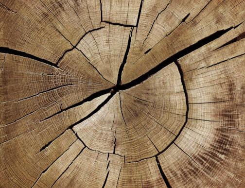 Holz mit Rissen