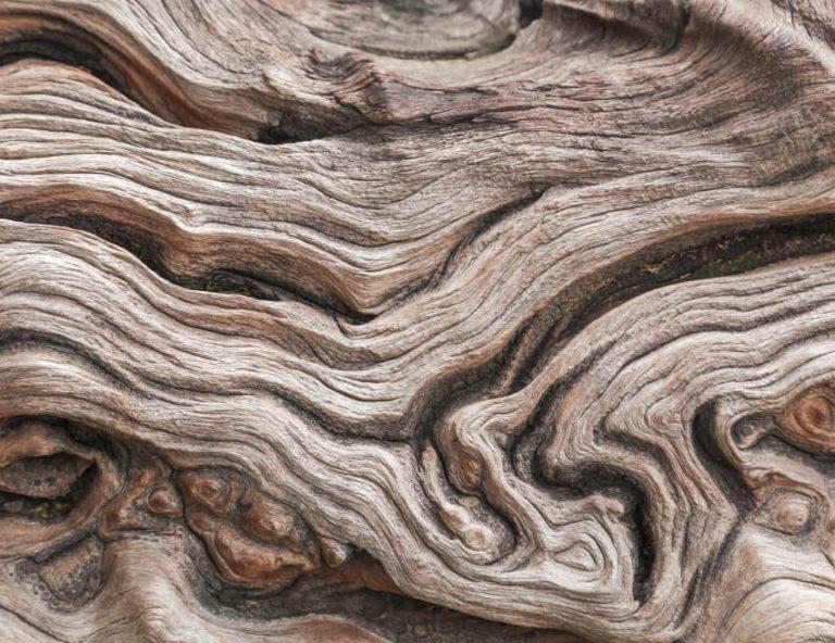 Geschwungenes Holz