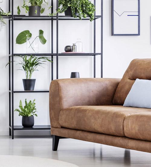 Metallregal mit Pflanzen und cgcnacfarbenem Sofa