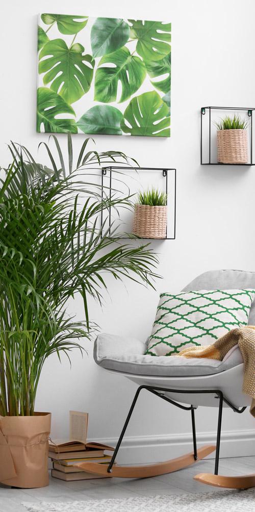 Leseecke mit Schaukelstuhl und Pflanzen
